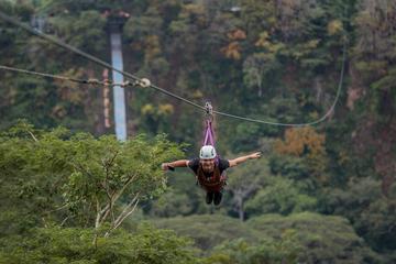 Full-Day Guided Turubari Adventure Park...
