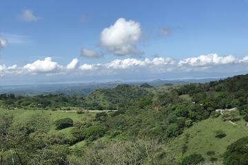 Full Day Monteverde Cloud Forest Tour...