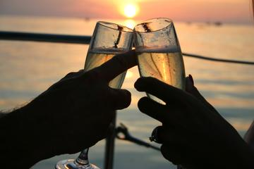 Crucero al atardecer con celebración...