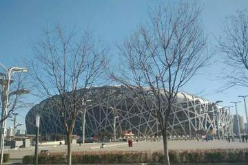 Beijing in a Day: Olympic Park, Beijing Zoo, Hutong, and More