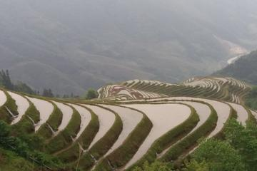 One Day Bus Tour of Rice Terrace and Ethnic Minority Village
