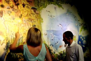 Tour combinato a Cozumel: Pass