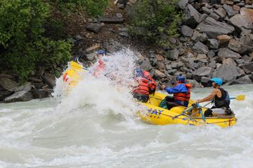 Day Trip Whitewater Rafting on Kicking Horse River Including Lunch near Golden, Canada
