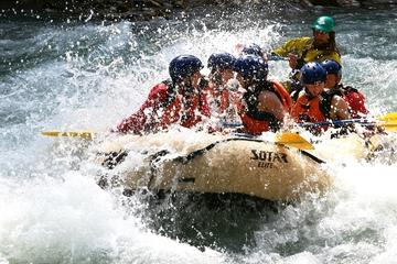 Day Trip Whitewater Rafting on Toby Creek near Invermere, Canada