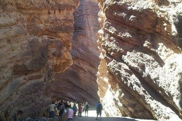 Full-Day Tour Cafayate Calchaqui...