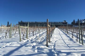 Day Trip Kelowna Wine Tour near Kelowna, Canada