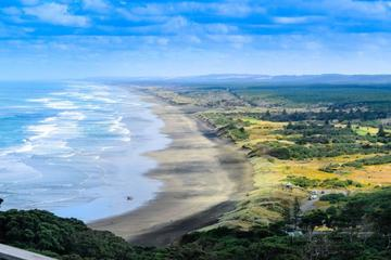 Private Tour of Muriwai Beach and...