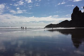 Private Tour of Piha and KiteKite...