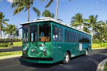 Book I-RIDE Trolley Unlimited Ride Pass on Viator