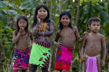 Escapada privada de un día a un pueblo indígena emberá