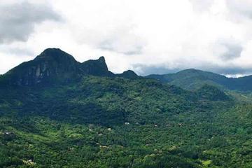Traslado privado de ida a las montañas de Panamá