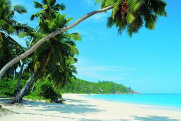 Traslado privado de ida a las zonas de complejos turísticos de playa...