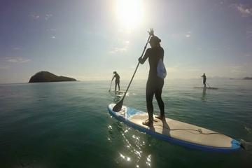 Cairns Double Island Stand Up Paddleboard Tour