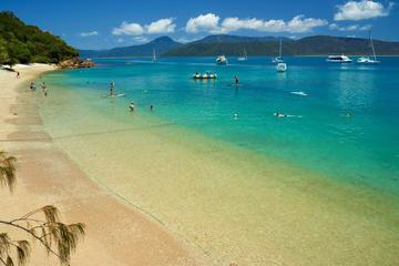 Fitzroy Island Stand Up Paddleboard and Snorkeling Day Trip from...