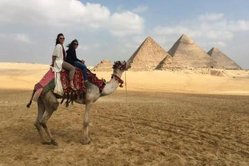 with Egyptology for half day private tour  Giza pyramids and sphinx in Cairo or Giza hotel