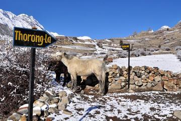 12 Nights 13 Days Annapurna Circuit Trek in Nepal