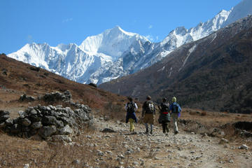 9 Nights 10 Days Langtang Trekking in Nepal