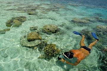 Cruzeiro em trimarã pela Isla Mujeres