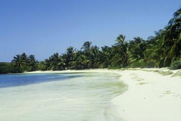 Gita giornaliera a Isla Contoy: snorkeling alla barriera corallina di