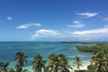 Isla Contoy and Isla Mujeres Combo Tour from Cancu