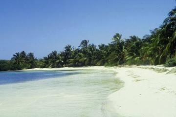 Viagem de um dia á Isla Contoy: mergulho com snorkel no recife...