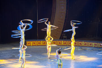 Zhujiajiao Private Day Tour and VIP Shanghai Acrobatic Show