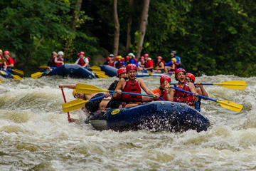 Day Trip White Water Rafting on the Pigeon River near Hartford, Tennessee