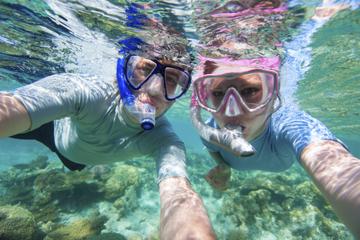 Cruzeiro de mergulho com snorkel em...