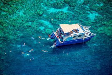 La bahía Kealakekua lujo buceo de superficie