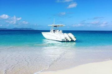 Buck Island Private Charter from St Croix