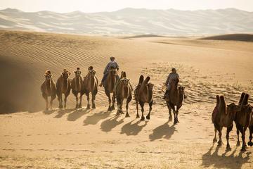 """Gobi Desert In 4 Days"""""""