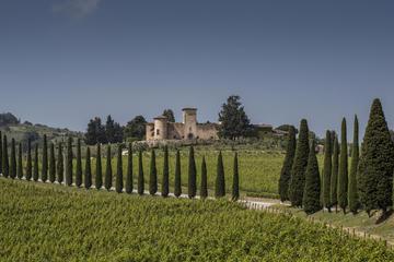 Wine Experience in Chianti Classico