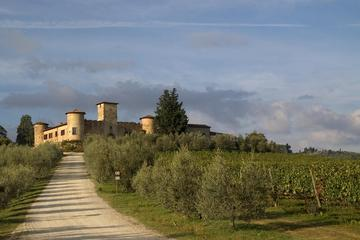 Winery Tour in a Castle in Tuscany