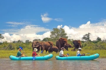 Full-Day Upper Zambezi Canoe Safari from Victoria Falls