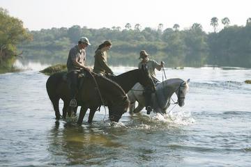 Horse Back Safari Tour from Victoria Falls