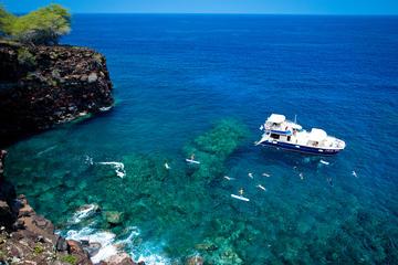 Deluxe Kona Coast Snorkel and BBQ...