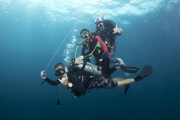 3-Day Fun Dive around Koh Tao with...