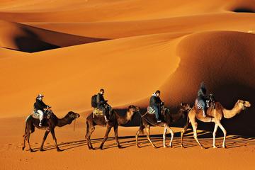 4 Days Fez to Marrakech via Desert Tour in small Group