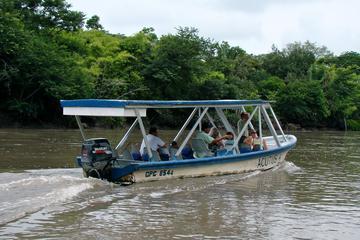 Palo Verde River Eco-Tour from Tamarindo