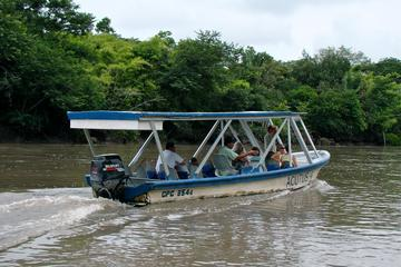 Palo Verde River Tour from Tamarindo