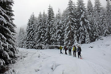 Full-day Vitosha Mountain Snowshoe Hiking Tour from Sofia