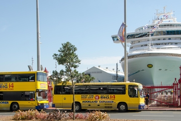 Landausflug in Auckland: Hop-on-Hop-off-Tour mit dem Bus
