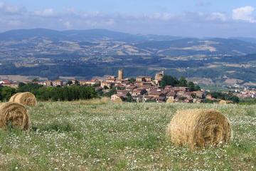 Excursion œnologique privée dans les châteaux du Beaujolais avec...