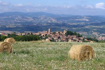 Excursion privée: vins et châteaux dans le Beaujolais