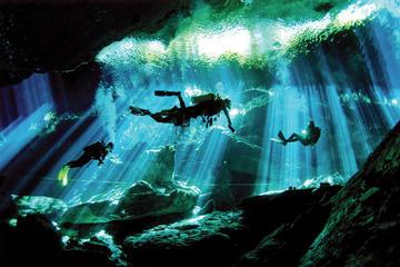 Inmersión con 2 bombonas en cenotes desde Playa del Carmen