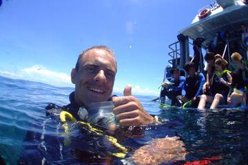 Leer scubaduiken op het Great Barrier Reef: 4-daagse PADI-duikcursus op open water