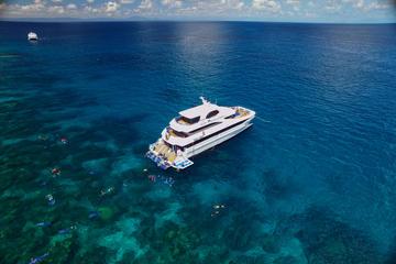 Offre spéciale Cairns: croisière à destination de la Grande Barrière...