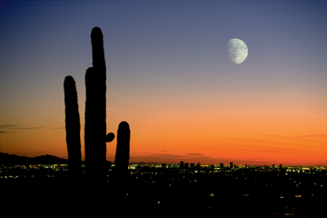 Tour aérien des lumières de la ville et du coucher du soleil à Phoenix
