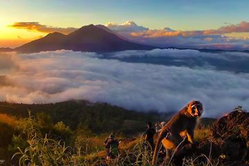 Shared Mount Batur Sunrise Trekking with Breakfast