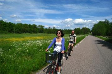 Copenhagen to Sweden Daytrip: Countryside Bike Tour